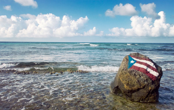 The Complete Guide to Vieques Island Caribbean, Puerto Rico